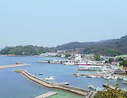 高台から見下ろす家浦港