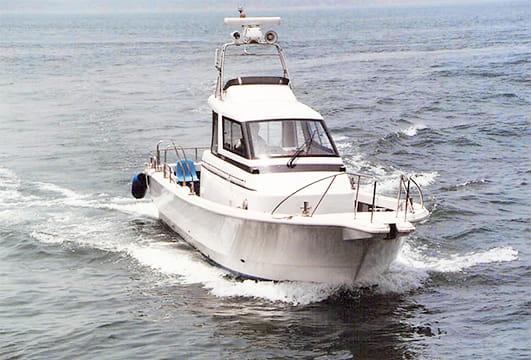 海原を疾走する船ブルーシャーク