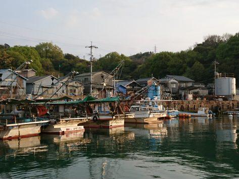 石島(井島)